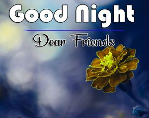 Free Good Night Wishes Wallpaper Downlaod