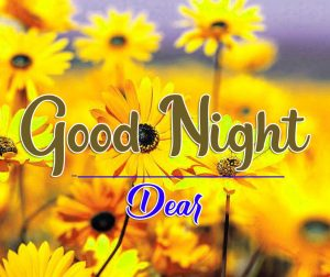 Free Good Night Wishes Wallpaper With Flower