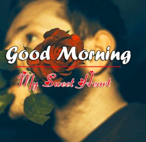 Free Lover Red Rose Free Good Morning Images Pics Download