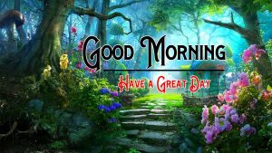 Free Nature Good Morning Images Download