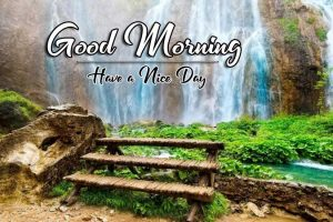 Free New p Good Morning Images Pic Download