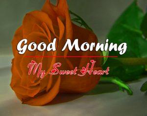 Free Romantic Good Morning Images Wallpaper Download