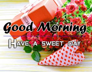 Free Rose P Friend Good Morning Pics Download
