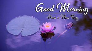 Free Top p Good Morning Images Wallpaper Download