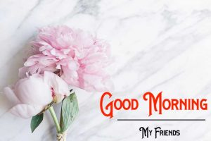 Good Morning Images pics free hd download