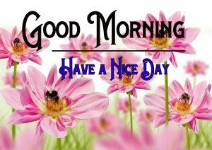Good Morning Photo Download