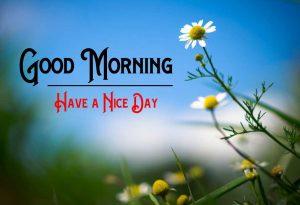 Good Morning Pic Download