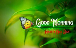 Good Morning Pics Download Fre e
