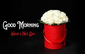 Good Morning Pics Download Free
