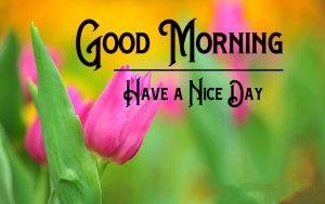Good Morning Pics New Download
