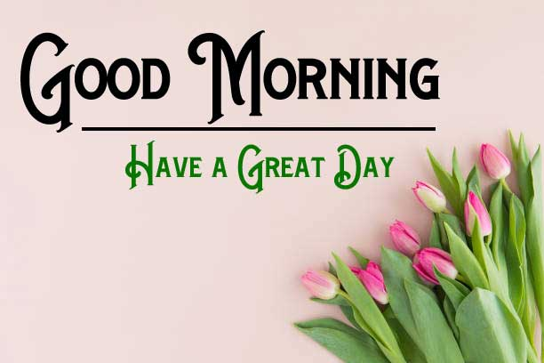 Good Morning Pictures Photo Pics For Whatsapp