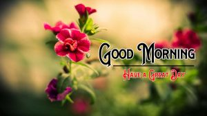 Good Morning Wishes Pic Download