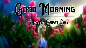 Good Morning Wishes Pictures