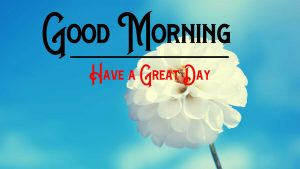 Good Morning Wishes Pictures for Whatsapp