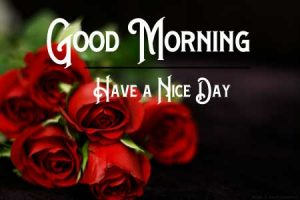 Good Morning photo With Red Rose