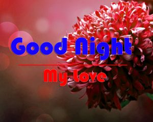 Good Night Wishes Pics Pictures Download