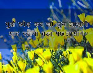 Hindi Shayari Wallpaper New Download