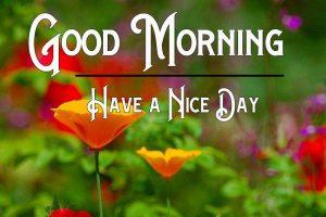 Latest Free Good Morning Pics Download