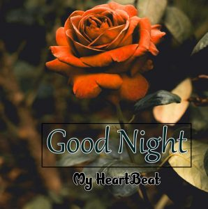 Latest Good Night Download Freee