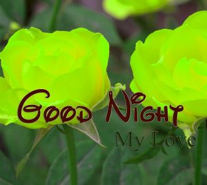 Latest Good Night Photo Hd