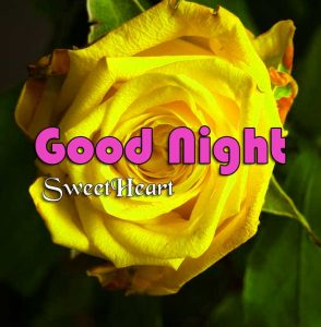Latest Good Night Pictures Free