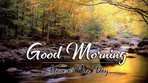 Latest HD Nature p Good Morning Images Pics Download