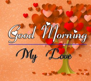 Latest New Good Morning Images Pics Download