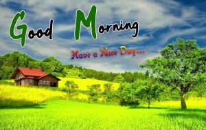 Nature Free p Good Morning Images Pics Download