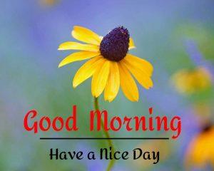 New Beautifu Good Morning Images photo for whatsapp