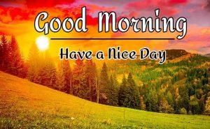 New Beautifu Good Morning Images pics hd download