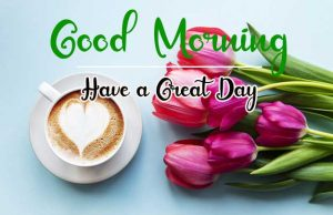New Beautifu Good Morning Images pictures free download