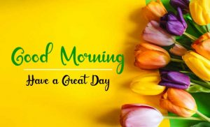 New Beautifu Good Morning Images pictures hd download