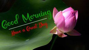 New Beautifu Good Morning Images wallpaper download