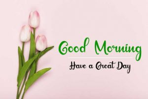 New Beautifu Good Morning Images wallpaper free hd download