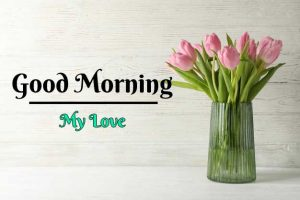 New Beautiful Flower Good Morning Images photo hd
