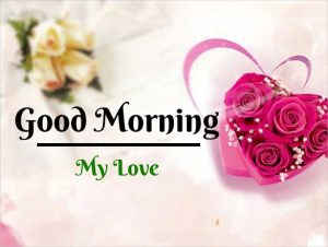 New Beautiful Flower Good Morning Images pics download