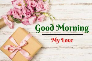 New Beautiful Flower Good Morning Images wallpaper free download
