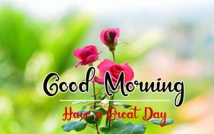 New Beautiful Good Morning Images photo download