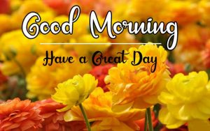 New Beautiful Good Morning Images photo for download
