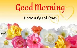 New Beautiful Good Morning Images photo for whtasapp