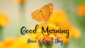 New Beautiful Good Morning Images photo hd