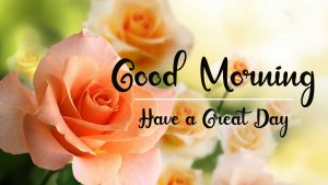 New Beautiful Good Morning Images photo hd download