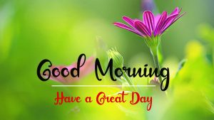 New Beautiful Good Morning Images pics for hd
