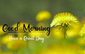 New Beautiful Good Morning Images pics hd