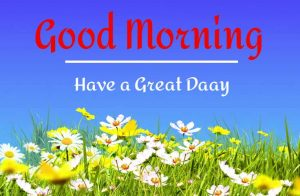 New Beautiful Good Morning Images pics hd download