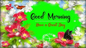 New Beautiful Good Morning Images pictures download