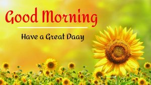 New Beautiful Good Morning Images pictures for download