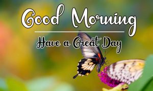 New Beautiful Good Morning Images pictures for hd