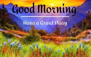 New Beautiful Good Morning Images pictures free hd
