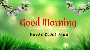 New Beautiful Good Morning Images pictures hd